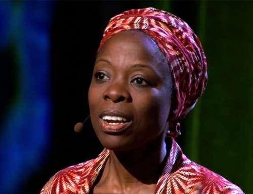-Achenyo Idachaba: Transform Adversity of Water Hyacinth into Prosperity